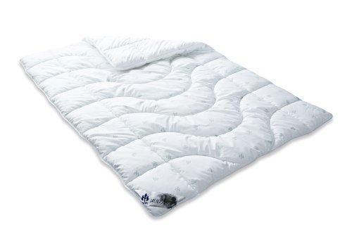 badenia bettcomfort steppbett irisette dreams 0. Black Bedroom Furniture Sets. Home Design Ideas